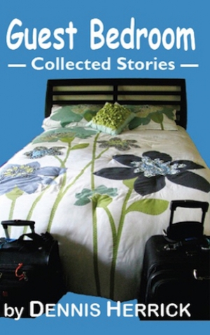 Guest Bedroom: Collected Stories